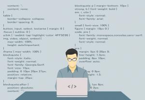 programador diseño web con wordpress barcelona websynet